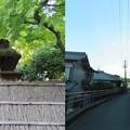 Photos: お茶屋屋敷跡(大垣市)