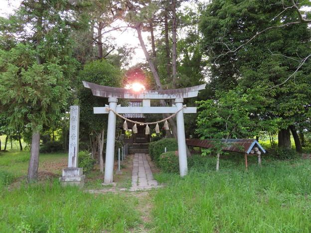 杭瀬川合戦 推定地(大垣市)日吉神社