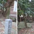 Photos: 南宮大社(垂井町)石舟社・金敷金床社
