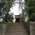Photos: 南宮大社(垂井町)?