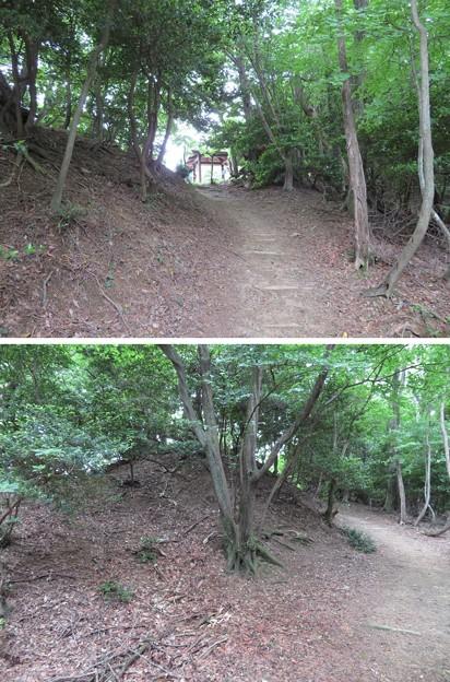 関ヶ原合戦 毛利秀元陣跡(垂井町)土塁・虎口