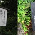 写真: 専精寺/垂井城(岐阜県不破郡)平塚為広辞世の句