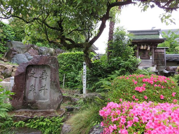 Photos: 18.05.23.専精寺/垂井城(岐阜県不破郡)垂井の泉