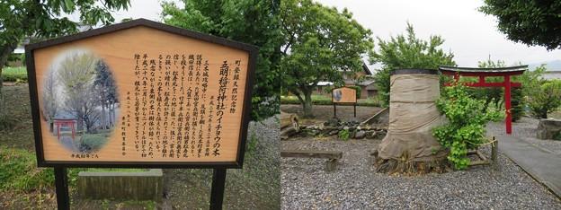 五明稲荷神社(垂井町)