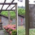 写真: 旧中山道松並木 六部地蔵(関ケ原町)