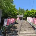 Photos: 郡上八幡城(郡上市)二の丸跡
