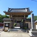 写真: 長敬寺(郡上市)山門