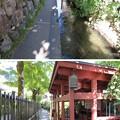 Photos: 清流と名水の城下町 郡上八幡(岐阜県郡上市)八幡町 いがわ小径
