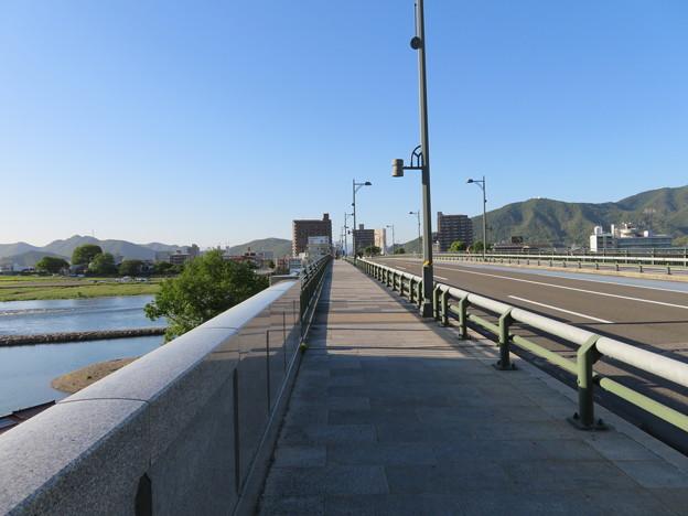 長良橋(岐阜市)南寄り西側