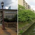 Photos: 富山城(富山市)舟橋跡・松川