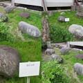富山城(市営富山城址公園)石垣展示