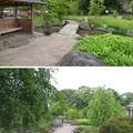 Photos: 富山城(市営富山城址公園)
