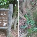 Photos: 増山城(砺波市)神保夫人入水井戸