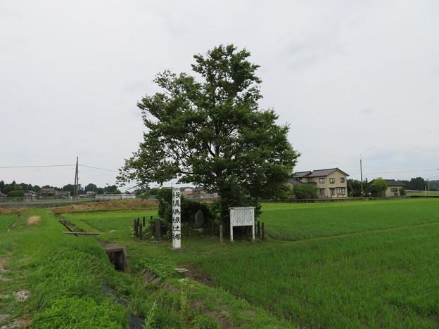 伝 長尾為景塚(砺波市)