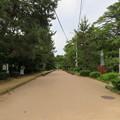 Photos: 高岡城(高岡市。高岡古城県定公園)大手口