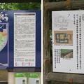 Photos: 高岡城(高岡市。高岡古城県定公園)