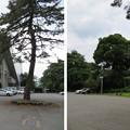Photos: 高岡城(高岡市。高岡古城県定公園)二の丸