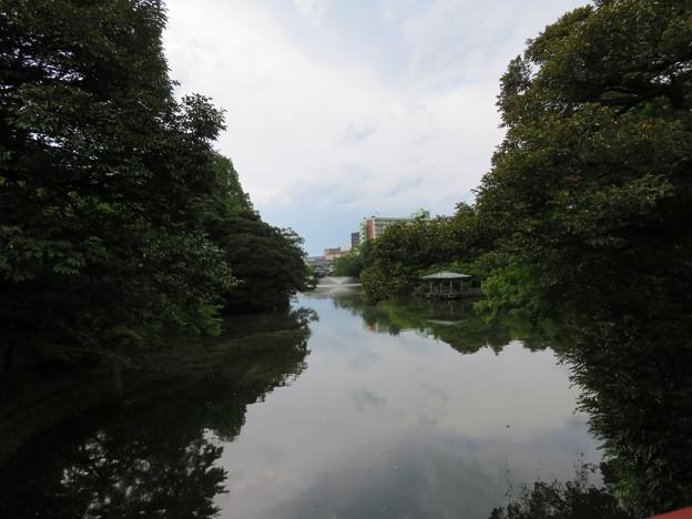 高岡城(高岡市。高岡古城県定公園)外堀・中之島