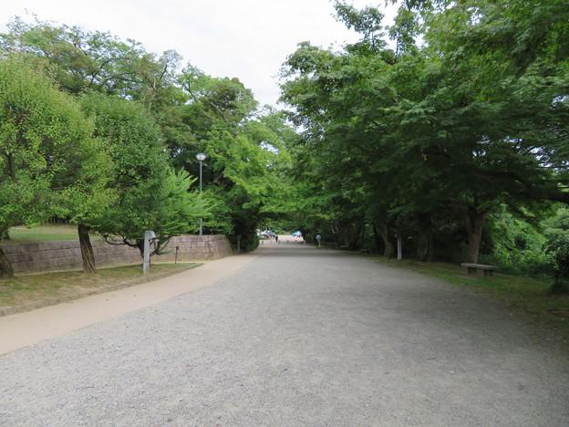 高岡城(高岡市。高岡古城県定公園)三の丸