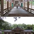 写真: 気多神社(高岡市伏木一宮)拝殿