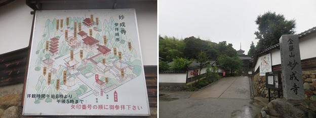 妙成寺(羽咋市)