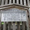 写真: 妙成寺(羽咋市)仁王門