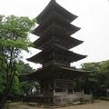 写真: 妙成寺(羽咋市)五重塔