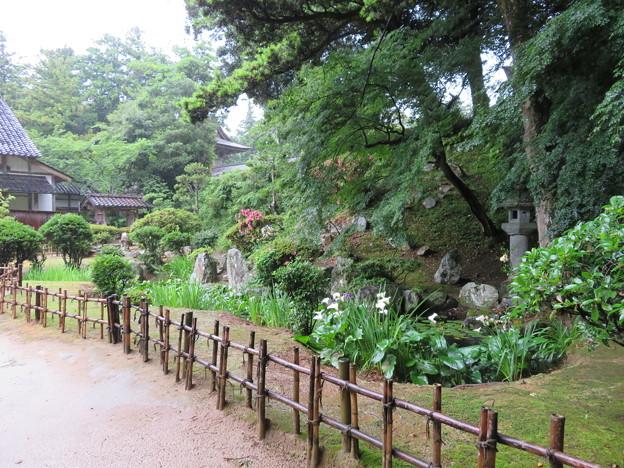 妙成寺(羽咋市)庭園
