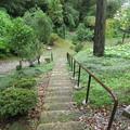 Photos: 山の寺寺院群 本行寺(七尾市)右近谷 右近嘆きの階段
