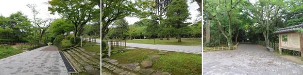 小丸山城(七尾市営 小丸山城址公園)本丸