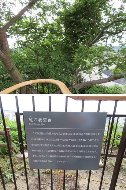 小丸山城(七尾市営 小丸山城址公園)展望台