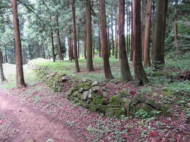 七尾城(石川県)遊佐屋敷石垣