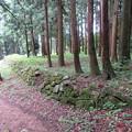 Photos: 七尾城(石川県)遊佐屋敷石垣