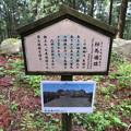 Photos: 七尾城(石川県)桜馬場