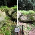 写真: 七尾城(石川県)西の丸桝形