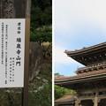 Photos: 真宗大谷派 井波別院瑞泉寺(南砺市)大門(山門)