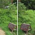 Photos: 荻町城(岐阜県大野郡)空堀・土塁