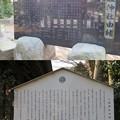 写真: 椎津城(市原市)八坂神社