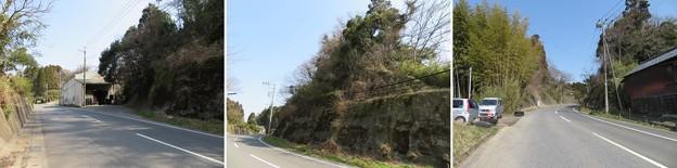 Photos: 庁南城(長生郡長南町)北面尾根・舞台