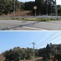 Photos: 庁南城(長生郡長南町)階段状郭