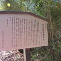 Photos: 庁南城(長生郡長南町)太鼓森