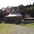 写真: 東長寺(大多喜町)