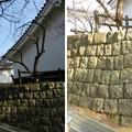 Photos: 大多喜城(千葉県夷隅郡大多喜町)