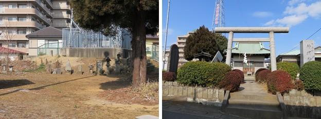 小金城(松戸市)神明社