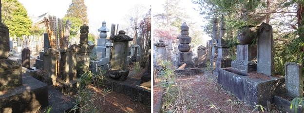 本土寺(松戸市)秋山越前守家墓所