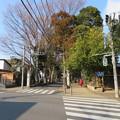 Photos: 本土寺(松戸市)参道