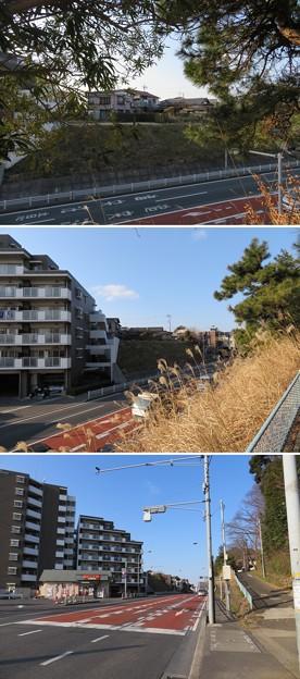 根木内城(松戸市)