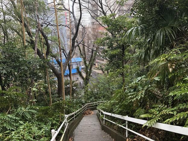 相模台城(松戸市営 相模台公園)