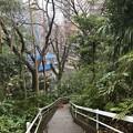 Photos: 相模台城(松戸市営 相模台公園)