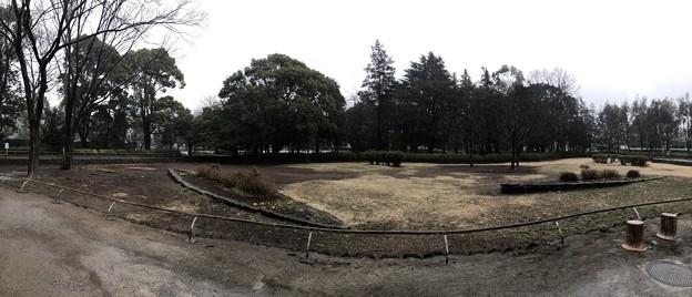 相模台城(松戸市営 松戸中央公園)